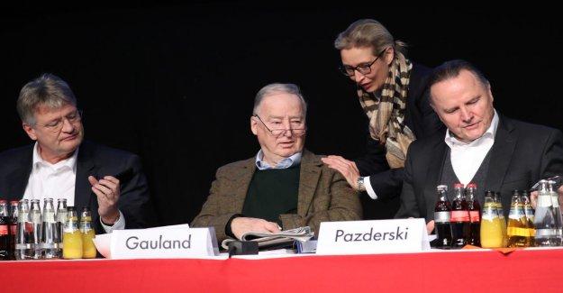 Dexit-de désaccord au sein de l'AfD: Personne ne veut de l'Extrême Ultimatum proposé