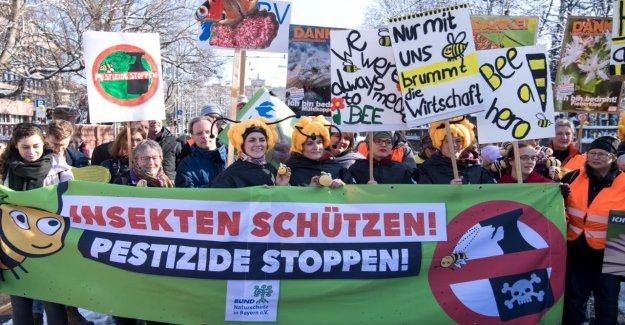 Munich: Sauvez les Abeilles: l'Initiative de la Biodiversité avec succès!!
