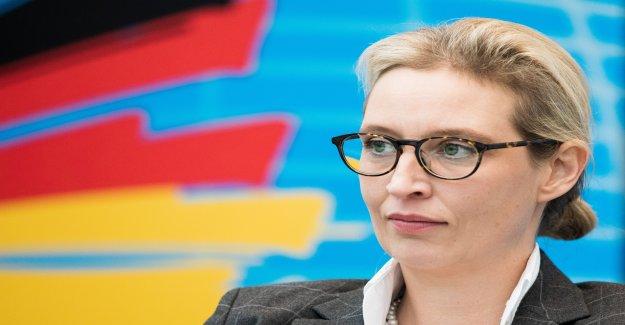 AfD-Dons-Scandale: le Canton de Zurich accorde l'Entraide judiciaire - Vue