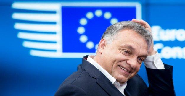 En hongrie, le Président Orban s'excuse pour les Idiots UtilesOracle lors de PPE