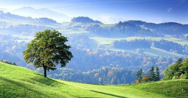 L'Asin reconnaît Berne - Vue