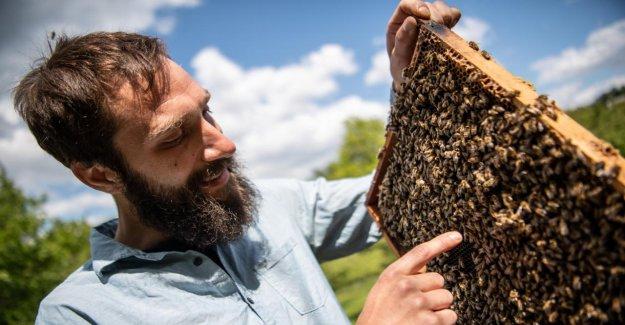 Dijon: de l'Initiative pour la Biodiversité est dans les Starting-blocks