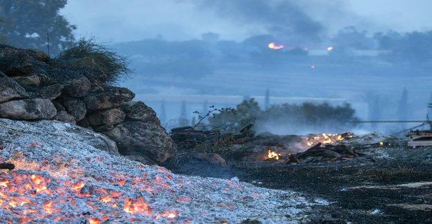 La canicule et les Incendies de forêt en Israël - Vue
