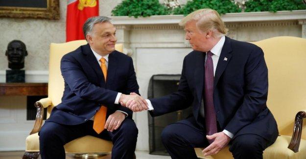 Réunion à la Maison Blanche: Donald Trump fait l'éloge de la Hongrie, le Président Viktor Orbán