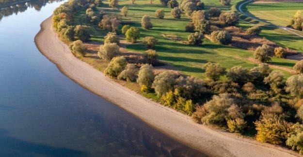 Romantique Force de la nature: Comme dangereux, c'est le Danube?