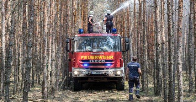 Incendie de forêt dans le Brandebourg: odeur de Brûlé attire jusqu'à Berlin