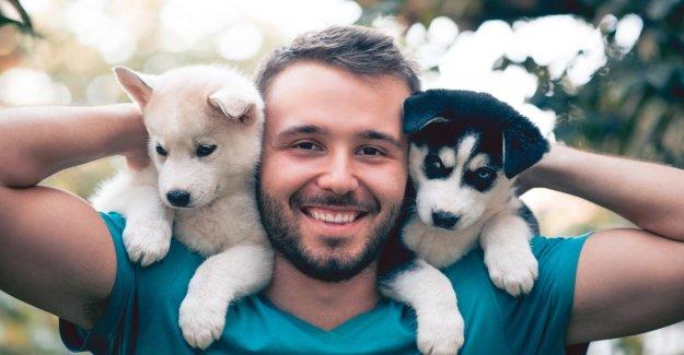 Les chiens sont l'Allemagne, la plus populaire Nom d'un Chien, Seins & Co