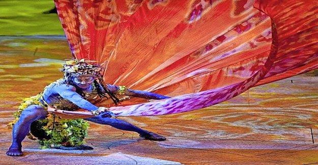 Maison de jeu pour Nick Beyeler, «Toruk» du Cirque du Soleil Vue