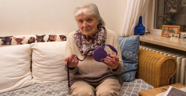 Munich:la Spca personne âgée prend le Chien à l'écart