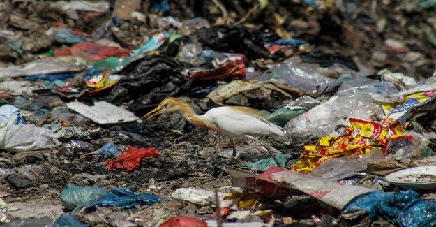VUE-Chronique de Claude Cueni sur la Dégradation de l'environnement, Vue