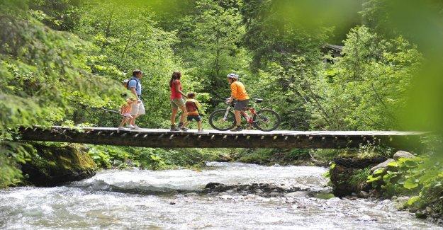 Vacances d'été: Cette Année, Spätbucher la Majorité des Vue