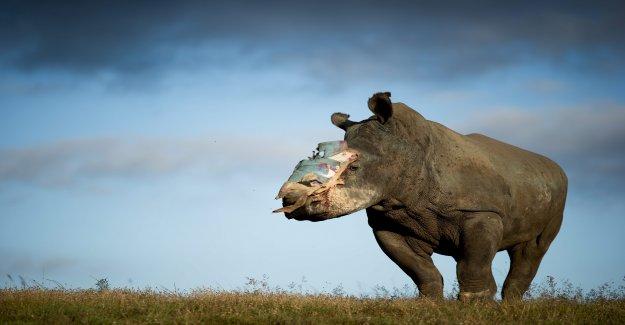 Le WWF doit Crimes avoir annoté - Vue