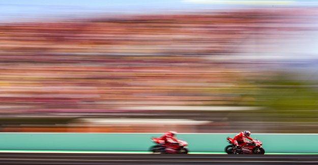 MotoGP: Danilo Petrucci roule en MotoGP, sans Examen du permis de conduire - Vue