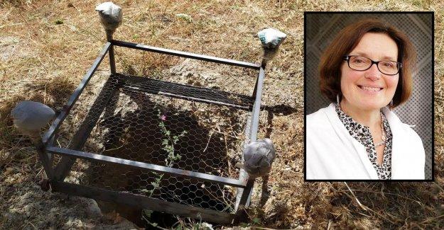 Un cadavre dans la Grotte sur l'île de Crète: Les dernières Heures de la Dresdner Chercheuse