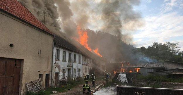 Déploiement à grande échelle dans Nonnweiler - Trois Blessés dans un Incendie à la Ferme