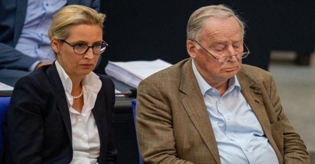 Élections régionales de Saxe et de Brandebourg: Économie watscht AfD à partir de