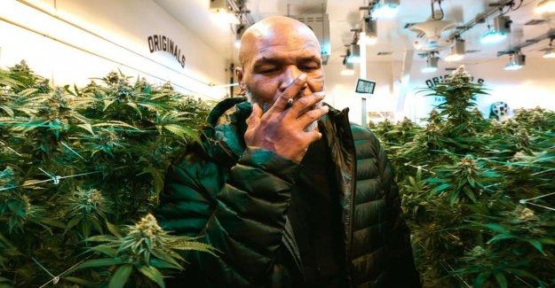 Mike Tyson: Il kifft Tissu d'une Valeur de 35 000 Euros par Mois