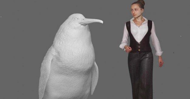 Nouvelle-zélande: les Chercheurs découvrent des Os de Monstre Pingouin