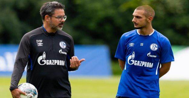 Schalke 04: Ce Knappenschmiede Stars de laisser David Wagner rayons