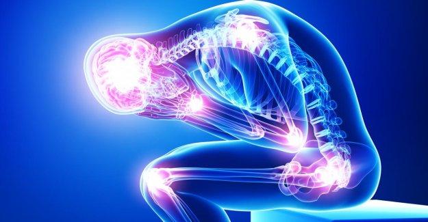 Schmerzrätsel résolu? Les chercheurs découvrent le nouvel Organe sous la Peau