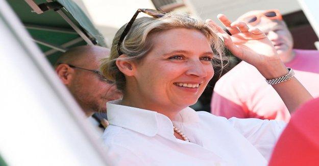 Alice Weidel de votre Famille et la Vie en Suisse - Vue