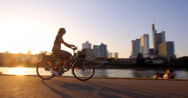 La posture, la Selle, le Réglage: Pour éviter les Douleurs lors de Vélo