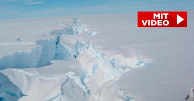 Antarctique: Iceberg D-28 annulée, il est 15 fois plus grande que Paris