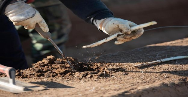 L'autosuffisance en danger: Mesures de l'Allemagne Récolte pourraient sauver