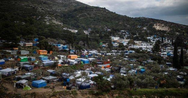 Les enfants campent sur le Sol de la forêt: Le Flüchtlingsdrama sur la mer Égée, l'Île de Samos