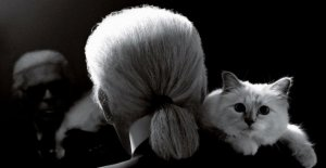 Karl Lagerfeld: Choupettes d'Adieu, Daddy Karl