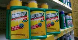Glyphosate: Monsanto Produit selon l'US-Jury pour le Cancer coresponsable