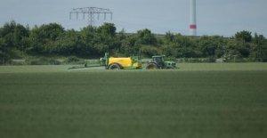 Glyphosate: mais Où est le Pesticide partout là-dedans?