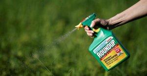 Le Roundup, l'Interdiction de Los Angeles: de Nouveaux herbicides à base de Glyphosate Choc pour le Bayer