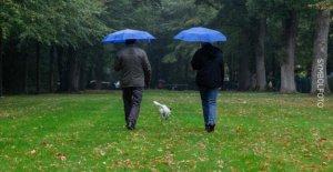 Munich: Météo en Bavière: Il est plus froid et pluvieux