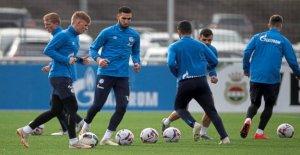 Schalke 04: Huub Stevens reste difficile dans le Cas de Nabil Bentaleb
