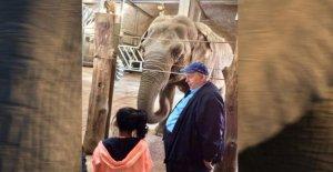 Zoo de Neunkirchen: Rencontrer les deux poids Lourds