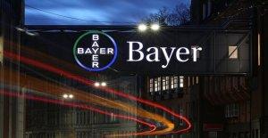 Bayer Chiffres: des Milliards de Bénéfices en dépit de Monsanto Crise