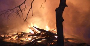 La sécheresse dans toute la France: Dans le Brandebourg, la Forêt en Flammes!
