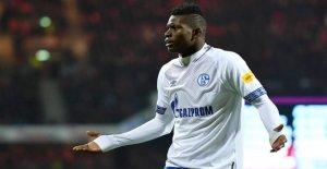 Schalke 04: Ces Professionnels jouent pour leur Avenir