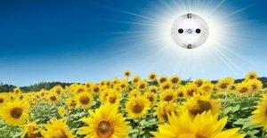 Energies renouvelables: Quelles sont les Sources d'énergie alternatives en valent la peine?