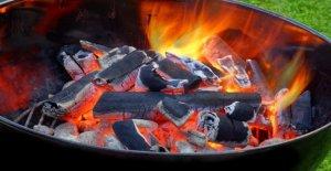 Stiftung Warentest: Dans 5 des 17 charbon de bois, les Sacs se cache des bois Tropicaux!