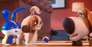 Nouveau dans le Cinéma: Pets 2: masquer les onglets sur un grand Tour