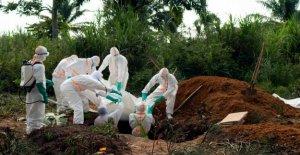 Ebola, l'Épidémie au Congo: L'OMS appelle internationale d'Urgence