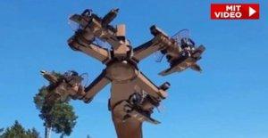 Adlerflug avec une croix gammée-Pauvres: Le marron, le Carrousel de Löffingen