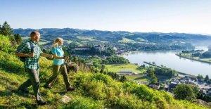 Donausteig - Une Randonnée pour les Sens