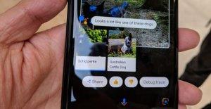Google Go - Version Mobile Du Navigateur: Google Go