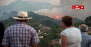 Gran Canaria: en Raison des Incendies de forêt 8000 Personnes mises en Sécurité