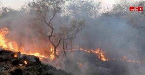 IMAGE Feuerstadt Cuiabá: Ces Incendies sont faites par les Hommes