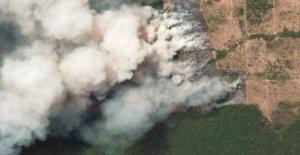 Les incendies dans la Forêt de l'Amazone: à quel point en sont les Conséquences pour le Climat?