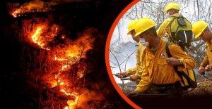 Les incendies de forêt au Brésil, hors de Contrôle